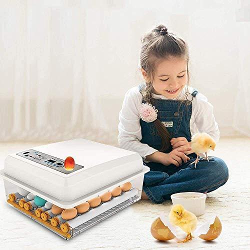 S SMAUTOP Incubadora de Huevos, incubadora automática de Huevos para 16 Huevos
